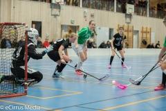 LindomeIBK-LindåsIBKIBKAlingsås-2469