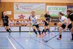 2018-09-16D2FalkenbergIBK-LindåsRastaIBK-3436