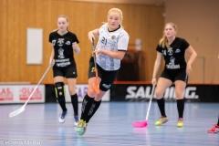 2018-09-16D2FalkenbergIBK-LindåsRastaIBK-3472