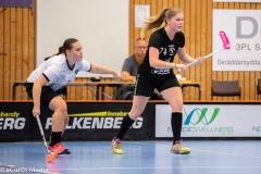 2018-09-16D2FalkenbergIBK-LindåsRastaIBK-3539