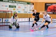 2018-09-16D2FalkenbergIBK-LindåsRastaIBK-3566