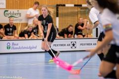 2018-09-16D2FalkenbergIBK-LindåsRastaIBK-3576