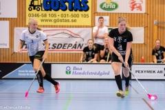 2018-09-16D2FalkenbergIBK-LindåsRastaIBK-3693