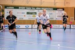 2018-09-16D2FalkenbergIBK-LindåsRastaIBK-3721