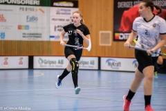 2018-09-16D2FalkenbergIBK-LindåsRastaIBK-3730