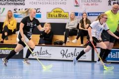2018-09-16D2FalkenbergIBK-LindåsRastaIBK-3838