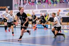 2018-09-16D2FalkenbergIBK-LindåsRastaIBK-3855