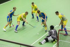2020-01-30-WFCQ-Ukraina-Sverige-011-0695